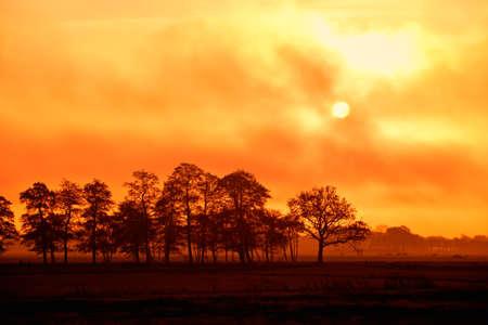 Sonnenuntergang Sonne hinter den Wolken und B�ume Silhouetten