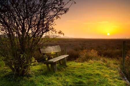 rest place with wooden bench at calm sunrise Stock Photo - 16573521