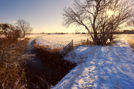 Dutch canal, wooden fence and tree in snow at sunrise photo