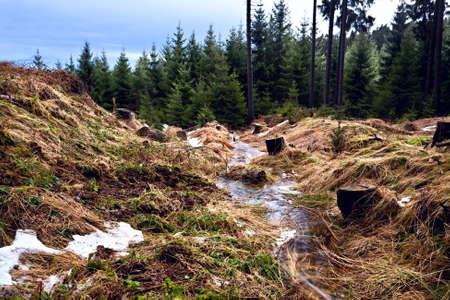 mountain creek in winter forest, De Harz Stock Photo - 17050835