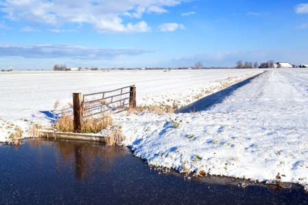 typical Dutch farmland in winter Stock Photo - 17308834