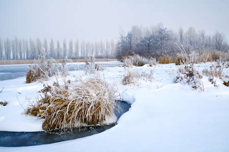 frosted plants and snow on frozen river in winter Stock Photo - 17621228