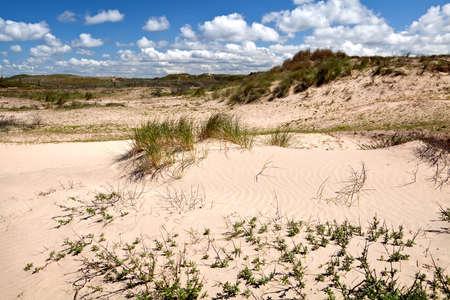 sand dunes over sky in Zandvoort aan Zee, Netherlands
