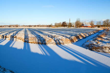 striped tree shadows on winter Dutch fields photo