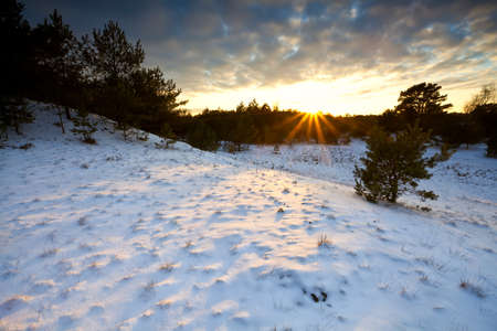 dramatic sunset over winter hill in Veluwe, Gelderland photo