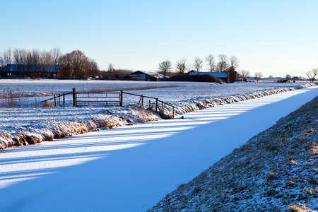 groningen: boom schaduw op het veld in de winter, Groningen Stockfoto