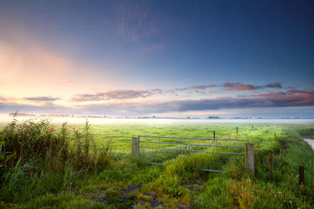 fense: fense on Dutch farmland in summer misty morning Stock Photo