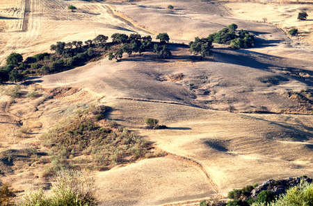 typical rural landscape by Montecorto in Andalusia photo