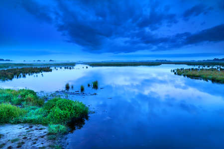 early blue calm morning dusk over swamp, Drenthe Stock Photo - 19049463