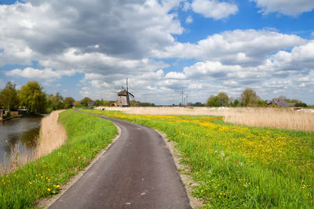 way to Dutch windmill along with many dandelions and blue sky, Alkmaar, Holland Stock Photo - 20219999