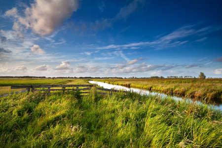 Dutch farmland in sunny summer day, Netherlands
