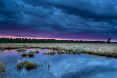 sunset during storm over swamp, Fochteloerveen, Netherlands