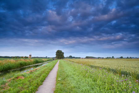 road for bicycles in Dutch farmland with windmill and wheat field photo