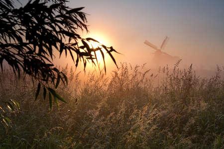 groningen: ochtend zon, winmdill silhouet en mist, Groningen, Nederland