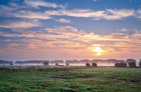 groningen: zomer zonsopgang boven Nederlands pastora, Groningen, Nederland Stockfoto