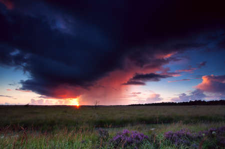 heathland: dramatic thunderstorm over heathland at sunset Stock Photo