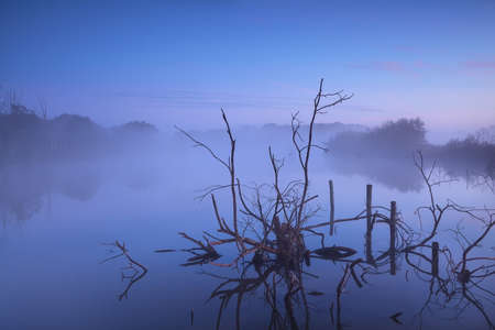 misty sunrise on bog, Drenthe, Netherlands photo