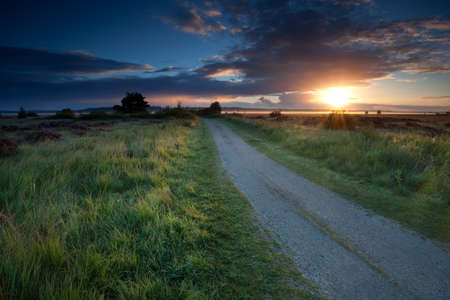 sunrise sunbeams over ground road through marshes, Fochteloerveen, Drenthe, Friesland, Netherlands