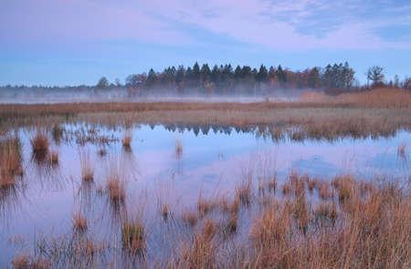 Misty autumn sunrise over swamp in Mandefijld, Bakkeveen, Friesland, Netherlands