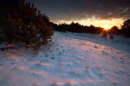 sunbeams over snowy hills at sunset, Nunspeet, Gelderland, Netherlands photo