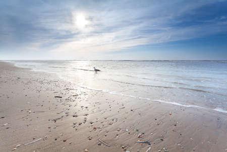 zonnige zandstrand in Noord-zee, Noord-Holland, Nederland