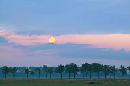 honey moon: full honey moon over meadows at sunrise