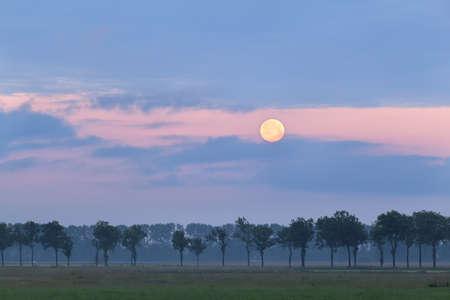 honey moon: full honey moon at sunrise over meadow
