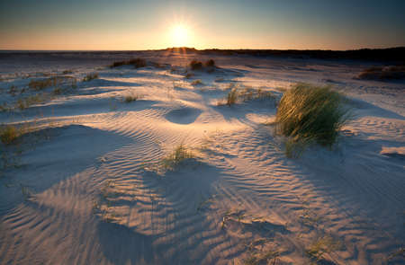 sunrise over sand dunes on North sea coast, Schiermonnikoog, Netherlands