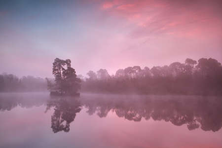 noord brabant: atmospheric misty sunrise over autumn forest lake