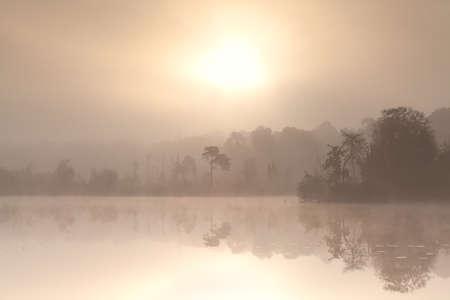 noord brabant: misty autumn sunrise over forest lake, Oisterwijk, Netherlands