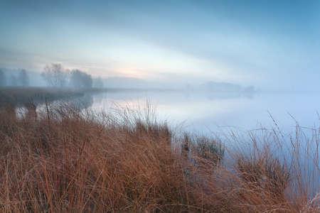 misty autumn swamp in morning, Friesland, Netherlands Stock Photo