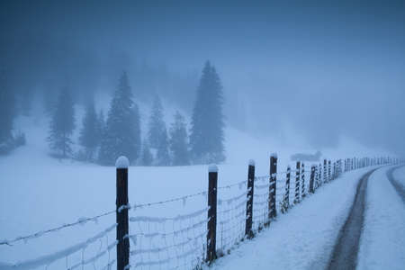 countryside road in foggy Alps, Bavaria, Germany photo