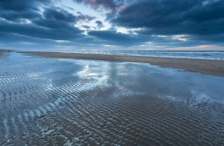 eb op Noordzeestrand, Holland
