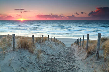 pink sunset: sand path to North sea beach before sunset, Holland