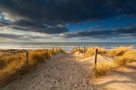 砂のビーチ、オランダに砂の道上サンシャイン 写真素材