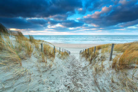 north holland: path on sand to beach at sunset, North Holland, Netherlands Stock Photo