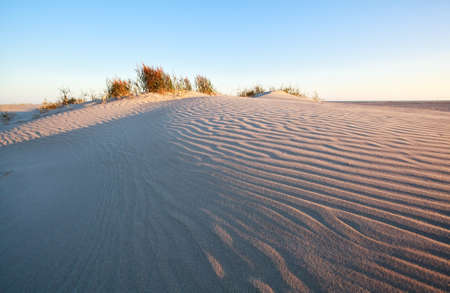 wind patroon op zandduin door Noordzeestrand Stockfoto