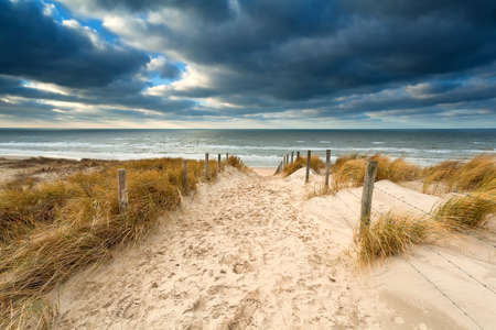 way to stormy North sea beach, North Holland, Netherlands