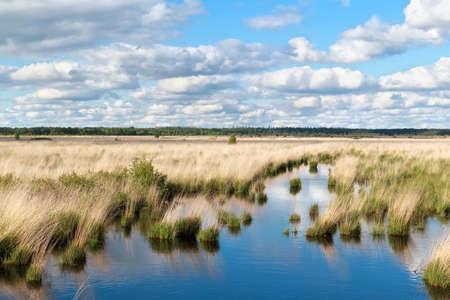 blue sky over swamp water, Friesland, Netherlands Banco de Imagens