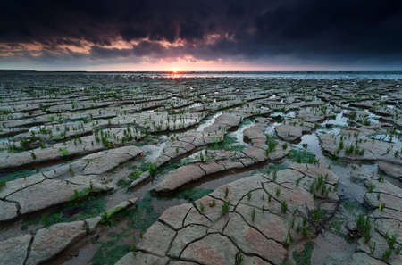sunset on Wadden sea coast at low tide, Netherlands