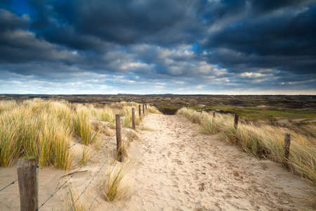 north holland: sand path to dunes and cloudy sky, North Holland, Netherlands