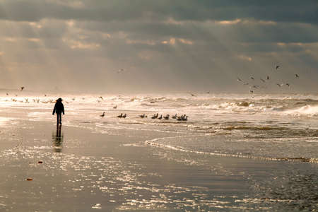 girl silhouette on North sea beach and sky sunbeams, Holland Stock Photo