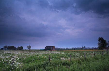 dutch: stormy dusk on Dutch farmland, Netherlands