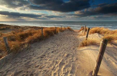 zandpad naar Noord-zee strand in de zon, Noord-Holland, Nederland Stockfoto