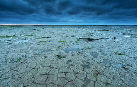 the wadden sea: cracked Wadden sea coast in summer at low tide, Netherlands Stock Photo