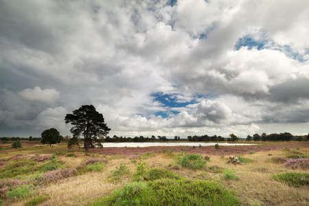 heathland: stormy sky over lake and heathland, Drenthe, Netherlands