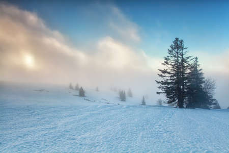 mountaintop: foggy sunrise on winter mountaintop, Feldberg, Germany Stock Photo