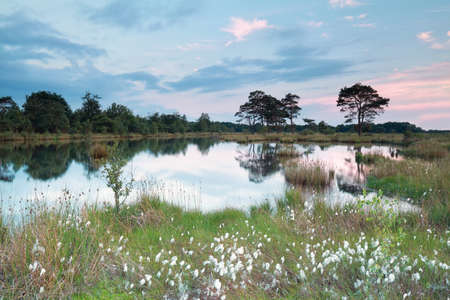 spring evening on wild lake, Drenthe, Netherlands Stock Photo