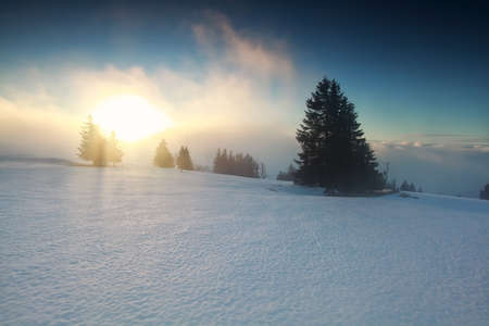 mountaintop: foggy winter sunrise on mountaintop, Feldberg, Germany Stock Photo
