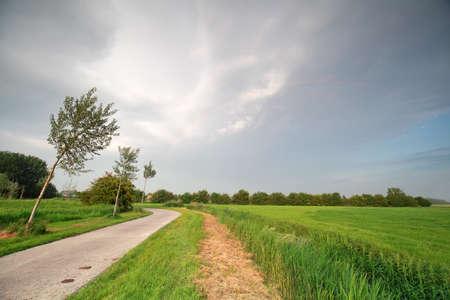 biking path in Dutch countryside during rainy weather
